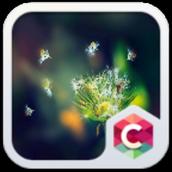 Dandelion Theme For C Launcher